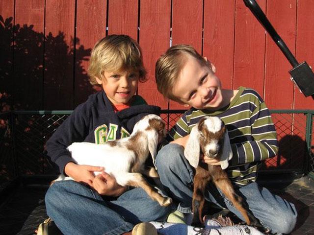 petting_the_goats_amys_farm