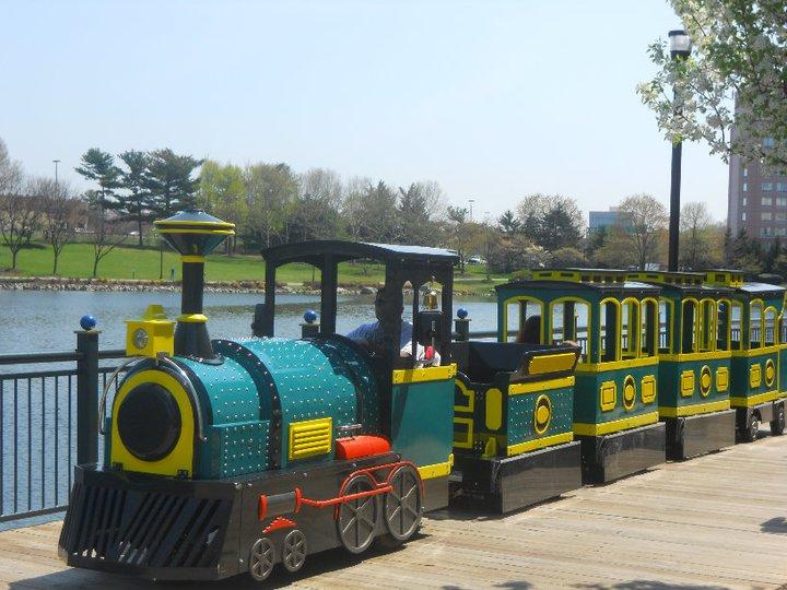 rio-train