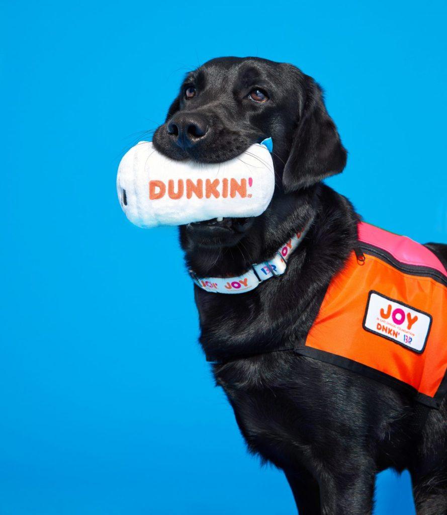 Dunkin' Dog Toys